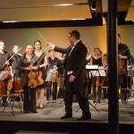 Sinfonietta dell'Arte